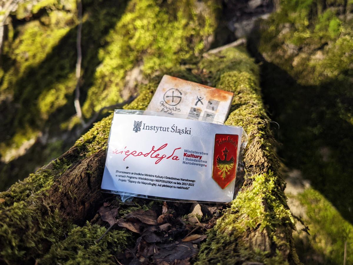 Zdjęcie przypinki z logbookiem gry terenowej Geocaching w lesie na Górze św. Anny