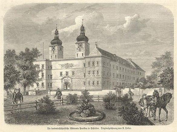 Akademia-Prószków